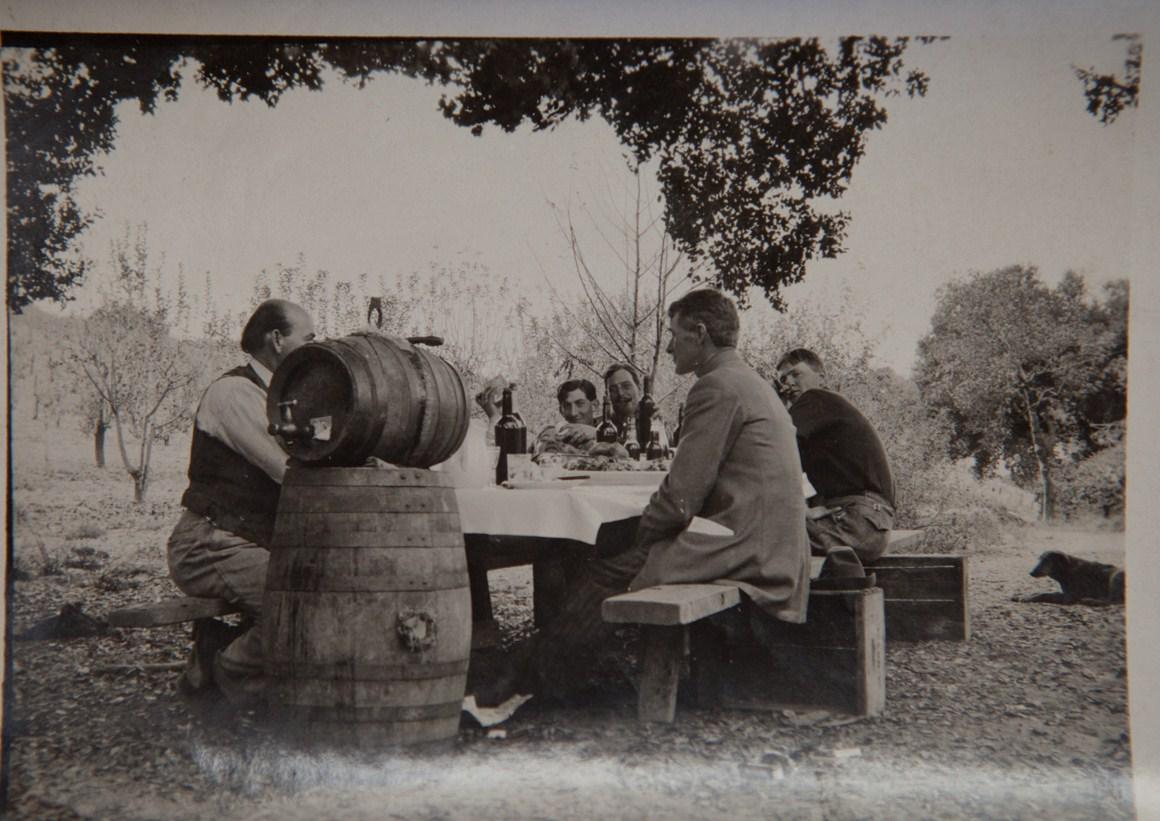 Taplin Cellars vineyard homepage banner